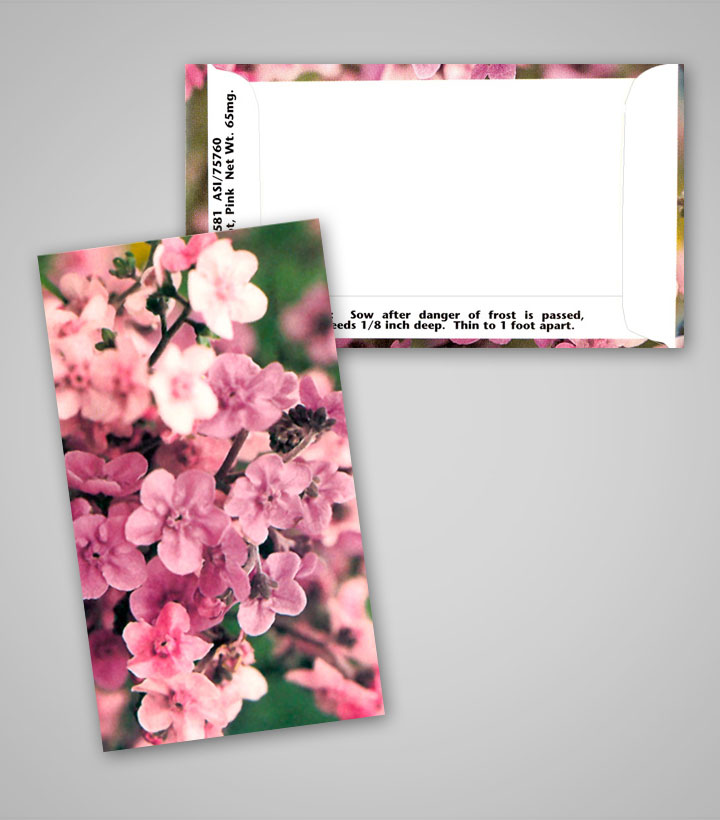 Pink Forget Me Not Business Card Personalized Seed Packets