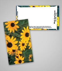 black-eyed-susan_business_card_size_pag.jpg