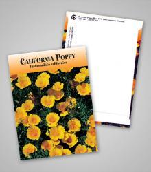 california-poppy_traditional_pag.jpg