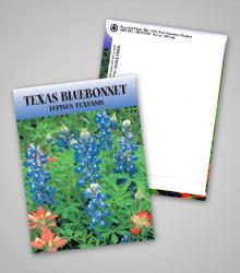 texas-bluebonnet_traditional_pag.jpg