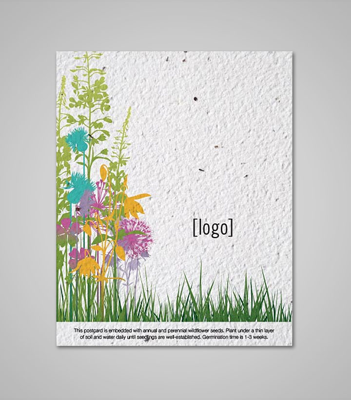 Seed Paper Postcard Every Day B