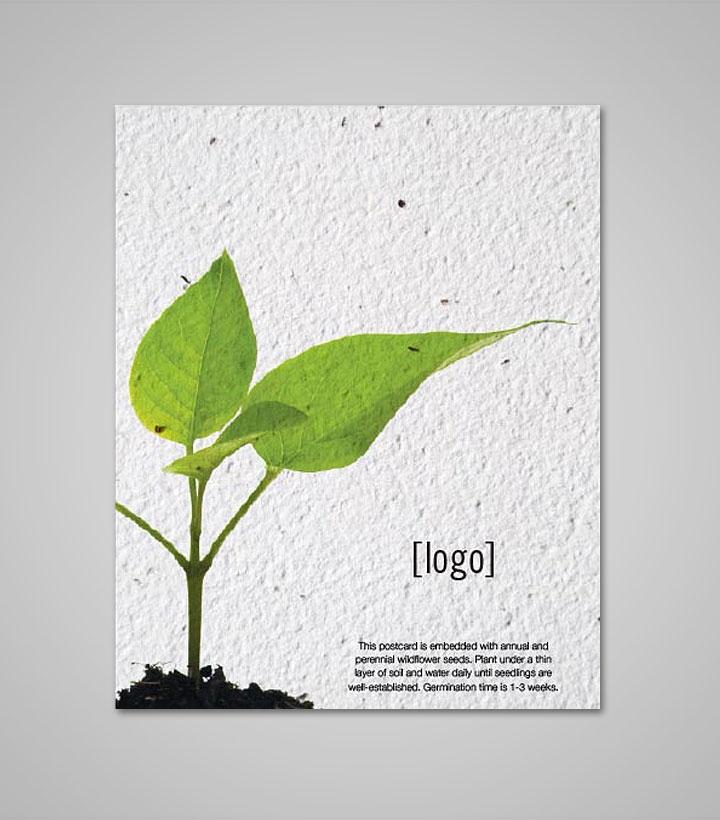 Seed paper postcard every day e mightylinksfo