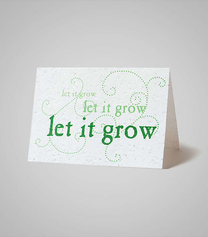 seed-paper-card-PSC-4.375x6.125-B.jpg