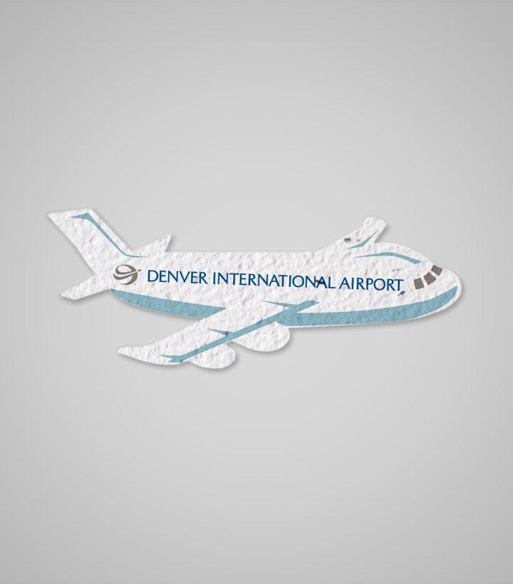 PSP-airplane.jpg