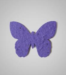 shape-Butterfly-7.jpg