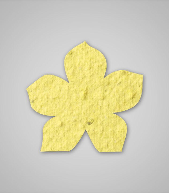 Ready to ship seed paper flower shape 14 shape flower 14 yellow rtsg mightylinksfo